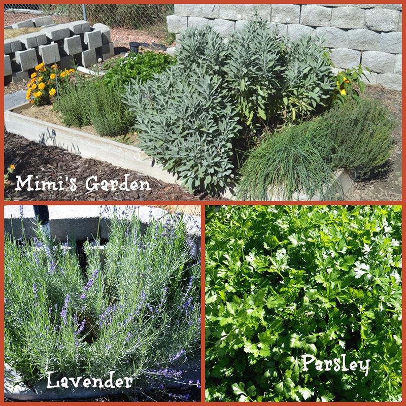 grannie geek, mimi's herb garden collage